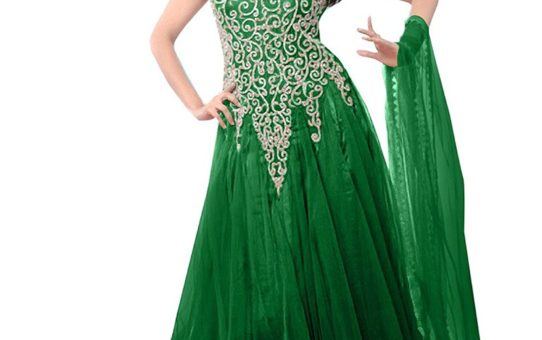 1 Stop Fashion Women's Net Gown (OS234014I _Green _Free Size)