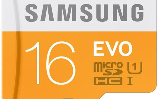 Samsung Evo 16GB Class 10 micro SDHC Card (MB-MP16D/IN)