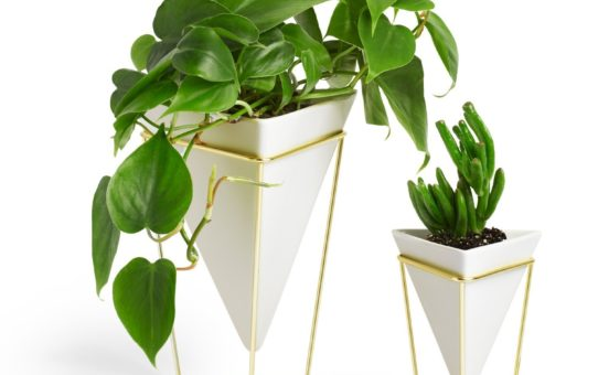 Umbra Trigg Desk Vessel (Set of 2), White/Brass